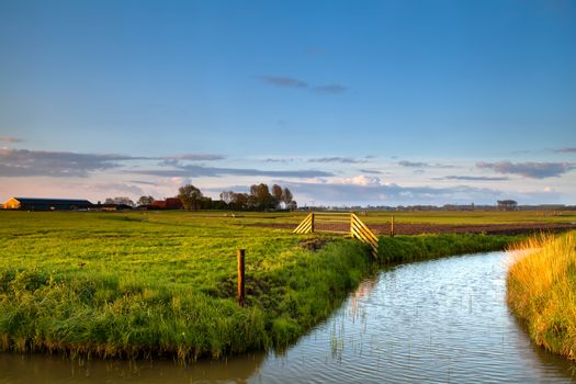 typical dutch farmland with canals