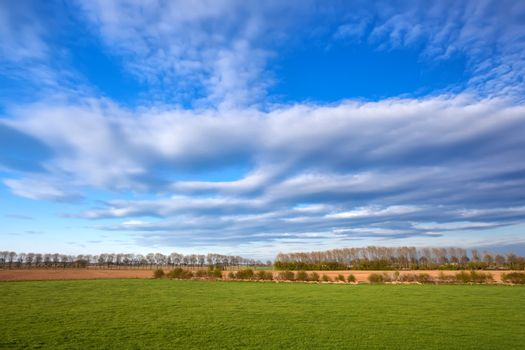 cloudscape over spring meadow