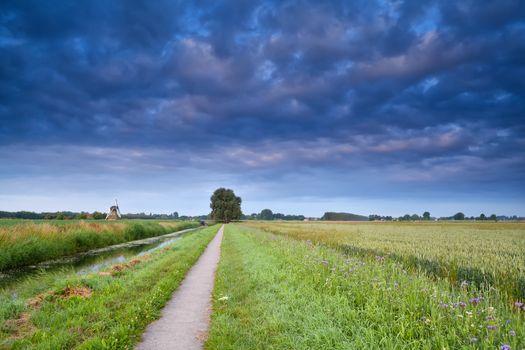 road for bicycles in Dutch farmland