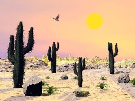 Arizona desert - 3D render