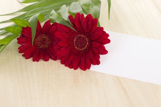 Two red gerberas with card on wooden background