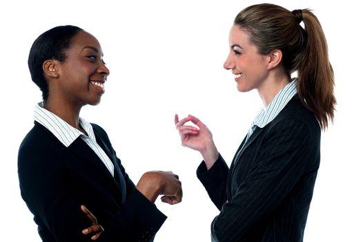 Pretty Businesswomen discussing