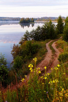 Dirt road near the lake.