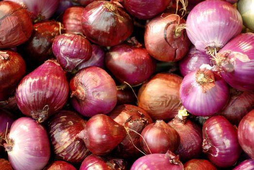 Onions, earth treasures