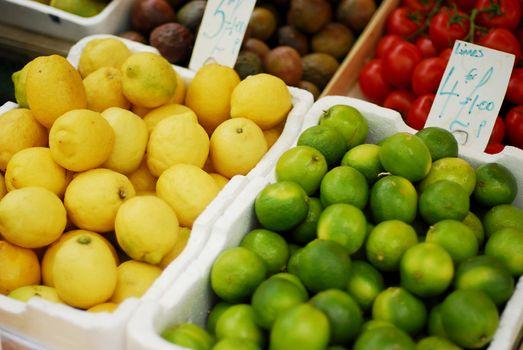 Citrus fresh limes and lemons