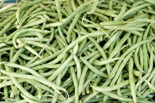 Harvested green beans