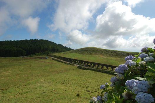 Aqueduct beyond the hydrangeas