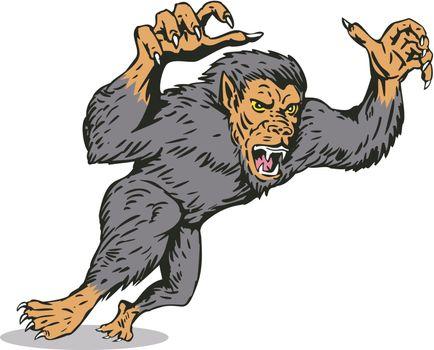 Werewolf Monster