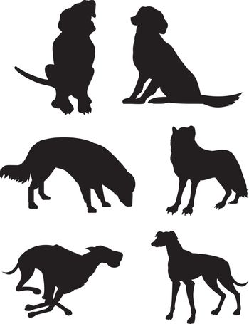 Canine Silhouettes