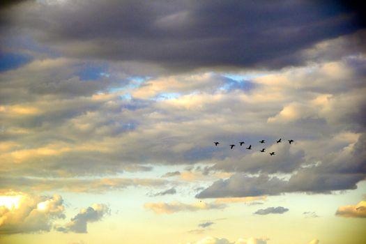 sky overcast