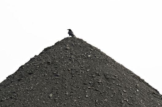 stock of raw coals