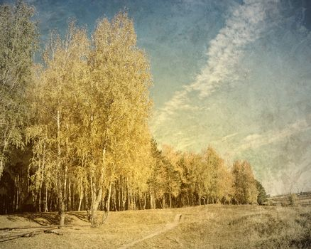 Old picture with forrest landscape as a background