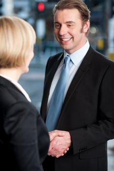 Business handshake, the deal