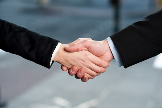 Business handshake, deal finalized