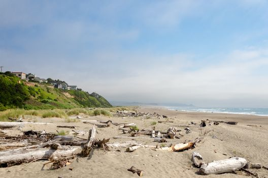 Driftwood covered beach at Lincoln City, Oregon