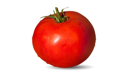 Tasty, wet tomato isolated over white background.