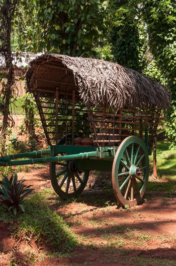 Old, green, wooden cart on two wheels.