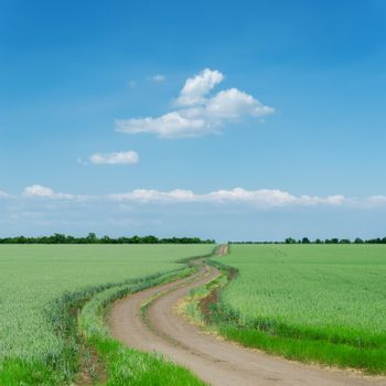 winding dirty road in green fields and blue sky