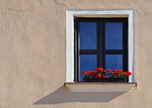 nice the window with florets