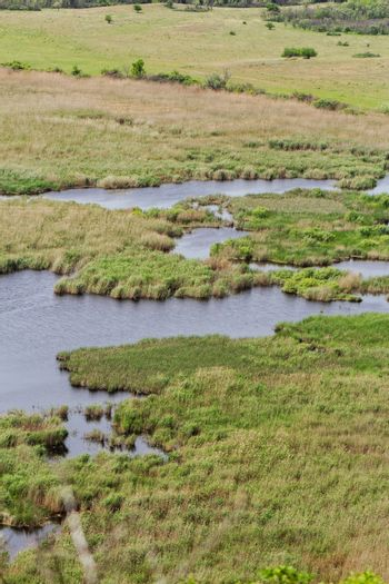 more small lakes in the reeds