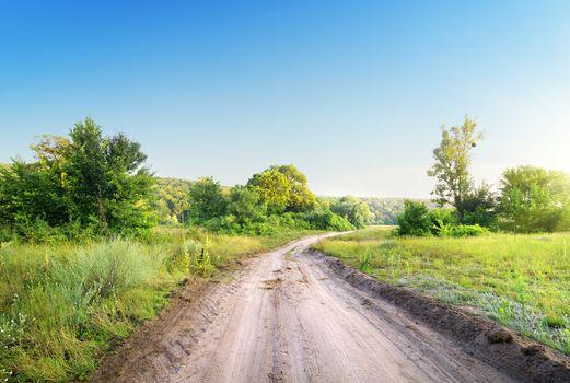 Winding road in a field