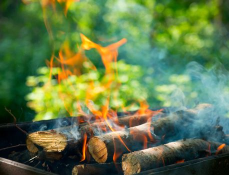 BBQ Fire outdoor. Bonfire closeup