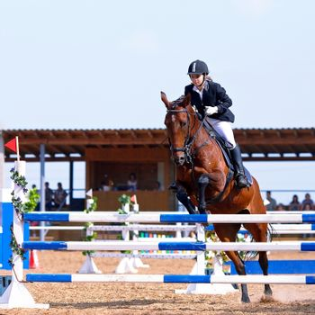 Jump on a horse through an obstacle.