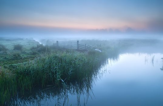 fog over river in farmland