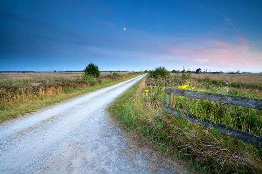 countryside road in moonlight