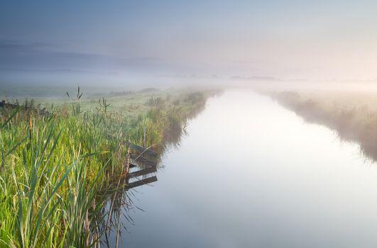 canal in Dutch farmland