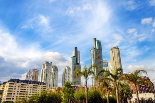 Skyscrapers of Puerto Madero in Buenos Aires, Argentina with palm trees in the foreground