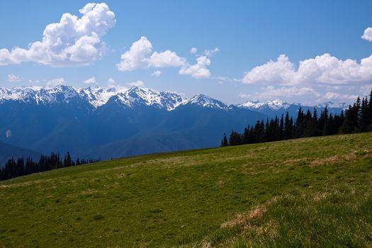 Mountain Landscape; Hurricane Ridge, Olympic National Park, Washington, USA