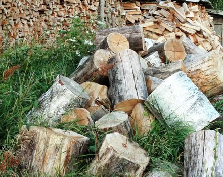 Sawn for cooking firewood tree trunks.