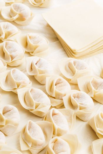 Homemade dumpling with raw material
