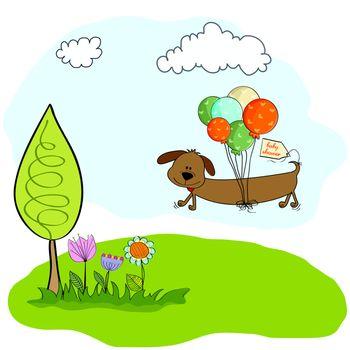 long dog and balloons