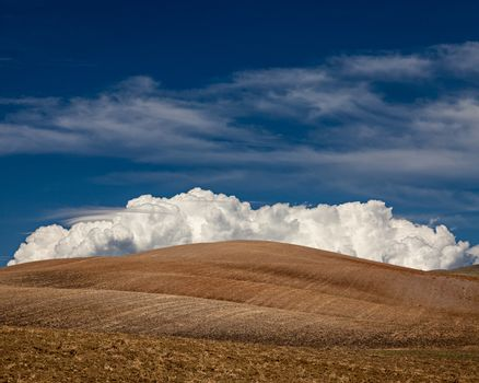Cultivated fields with big fluffy white cloud in Alentejo, in the south of Portugal.