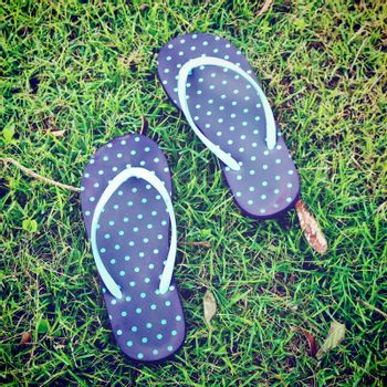 blue polka dot sandal on grass with retro filter effect