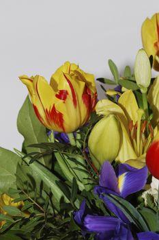 bouquet on white background portrait format