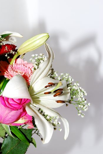bouquet on white background with shadow portrait view