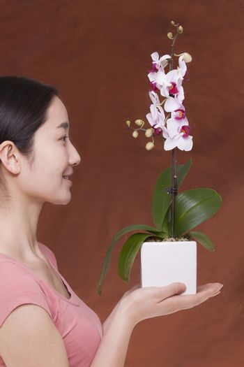 Side view of young woman holding a flower in a flower pot, studio shot