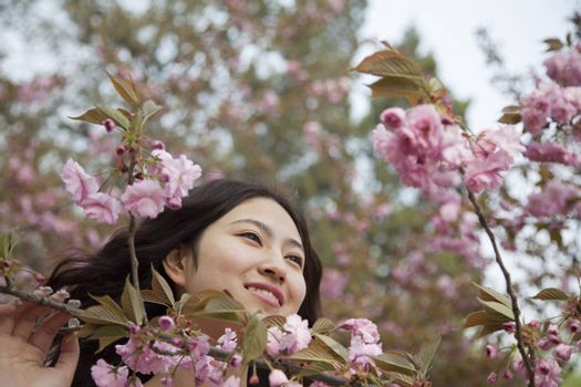 Portrait of smiling and serene young woman by beautiful pink blossoms, in the park in springtime