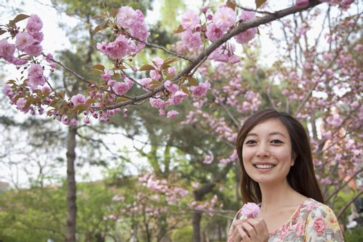 Portrait of smiling young woman under a blossoming tree holding a pink blossom in the park in springtime