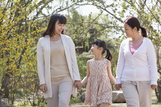 Multi-generational family, grandmother, mother, and daughter holding hands and going for a walk in the park in springtime