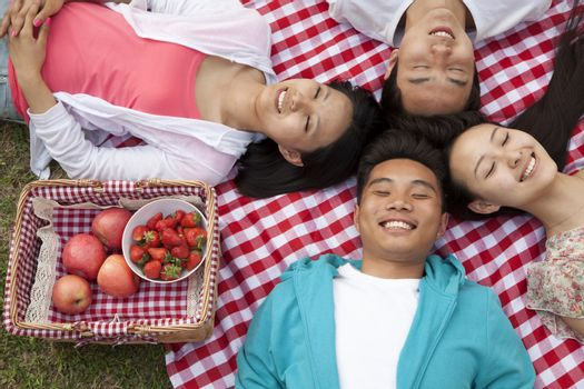 Four smiling young friends with heads touching and lying on their backs having a picnic in the park
