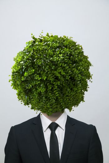 Businessman with a circular bush obscuring his face, studio shot