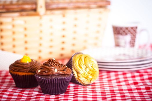 A picnic with delicious cupcakes and a beautiful picnic basket!