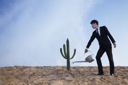 Young businessman watering a cactus in the desert