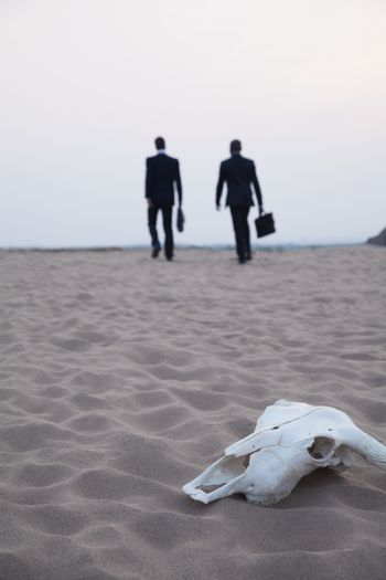 Two businessmen walking away from an animal skull in the middle of the desert