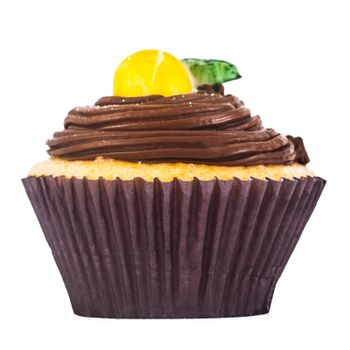 A gorgeous and delicious chocolate and lemon cupcake isolated on a white background.