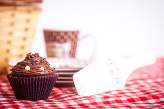 A picnic with a delicious cupcake and a beautiful picnic basket!